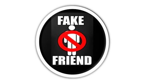 fakefriend2.jpg