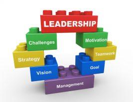 Membangun Tim Dengan Collaborative Leadership