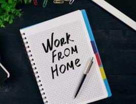 Work From Home: Pekerjaan Tuntas, Keluarga Harmonis