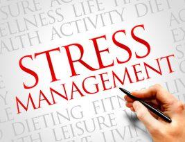 Keahlian Wajib di Era New Normal: Mengelola Stress